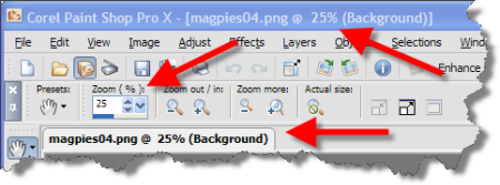 Places where the zoom percentage is shown