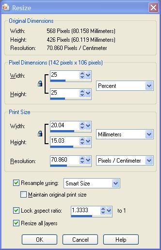 Resize window in PaintShop Pro X