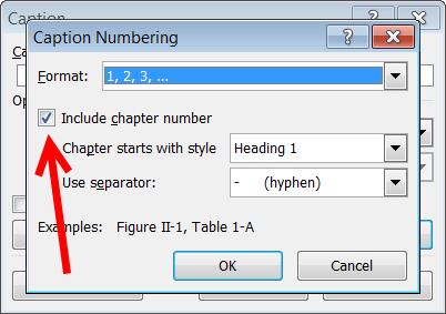 chapter_num_captions08