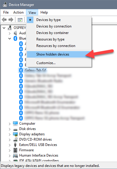 Device Manager window with the View menu selected and an arrow pointing to the Show Hidden Devices option